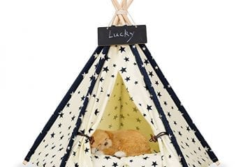 Zaihe Pet TeePee Cat Bed