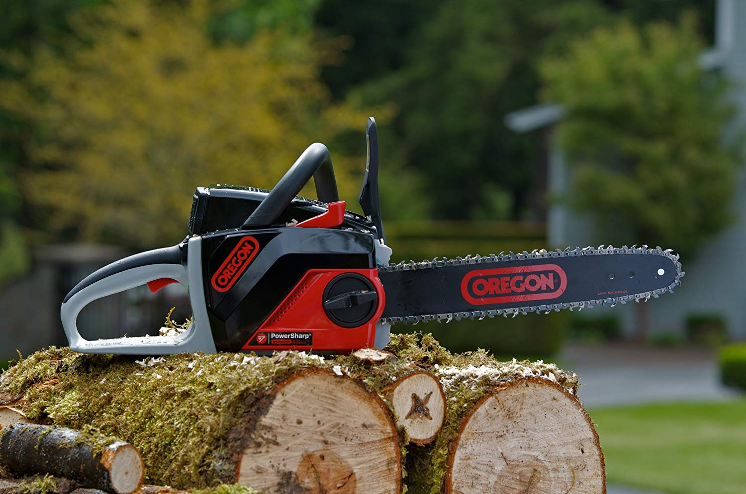 OREGON CORDLESS CS250-S6 Chain Saw