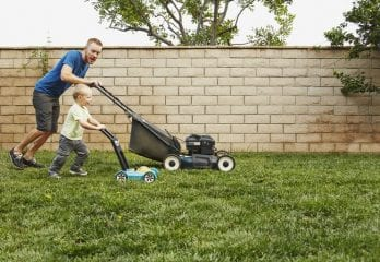 Best Lawn Mowers in 2019