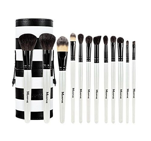12 piece Black and White Brushes