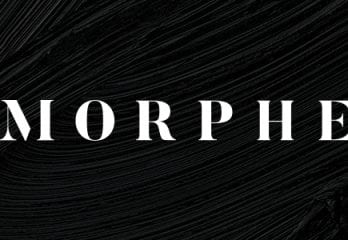 Top 10 Best Morphe Brushes in 2019