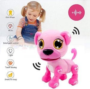 Yehtta Gifts Robot Dog